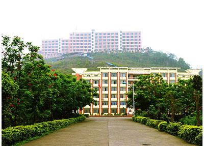 校园小道.jpg