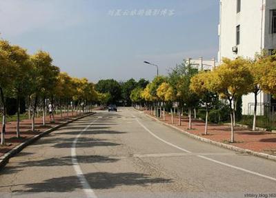学校风景3.jpg