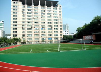 学校运动场