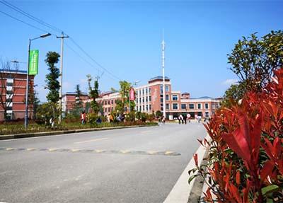 校园景色、.jpg