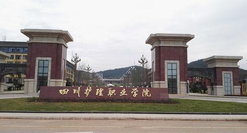 四川护理学院龙泉校区图片