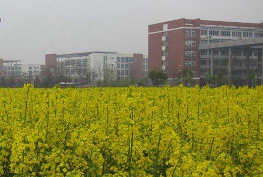 河南省卫生学校