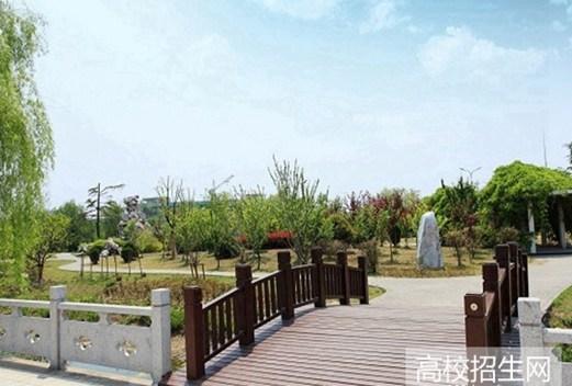 宁南县职业技术学校图片