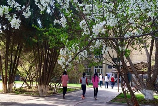 喀什卫生学校