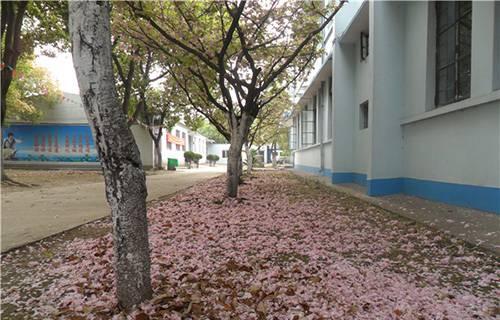 芜湖商贸工业学校